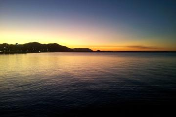 Cairns by Night Walking Tour including Cairns Wildlife Dome and Cairns Night Markets