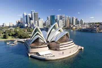Sydney Morning Tour with Optional Lunch Cruise and Sydney Opera House Tour Upgrade