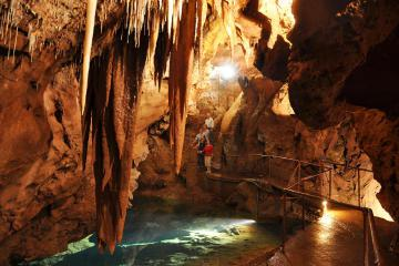 Blue Mountains and Jenolan Caves Day Trip from Sydney Including Optional Caving Adventure