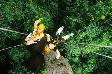 Rainforest Canopy Zipline Adventure from Bangkok