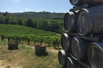 Chianti Classico Tour with Lunch from Lucca