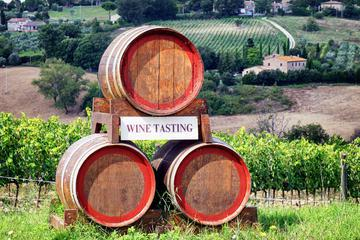Chianti Classico Tour with Lunch from Pisa