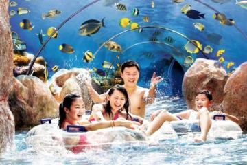 Skip the Line: Adventure Cove Waterpark Admission E-ticket