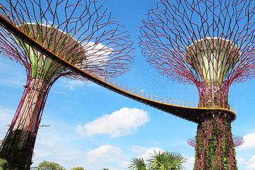 Skip the Line: Gardens by the Bay E-ticket