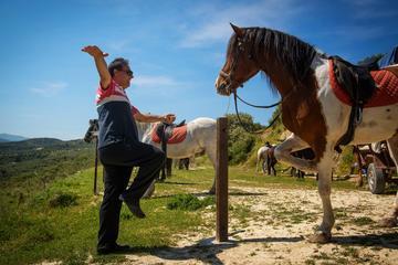 Cretan Horse riding in Finikia and Giouchtas Mountains