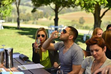 Hunter Valley Wine Tour with Cheese Chocolate Distillery and Lunch from Pokolbin Cessnock Lovedale