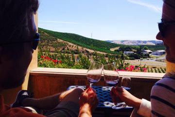 Half Day Sonoma Wine Tour from San Francisco