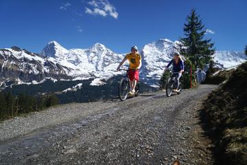 Bernese Oberland Mountain Scooter Tour from Interlaken