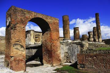 Private Tour: Pompeii Tour with Family Tour Option