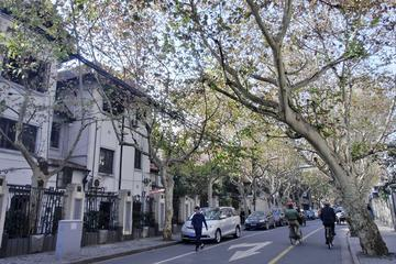 Private Walking Tour: Xintiandi and Hengshan Road in Shanghai