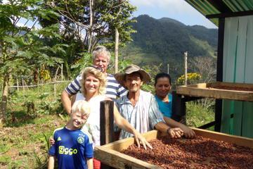 San Francisco Day Trip from Medellín: Chocolate Tour and Workshop
