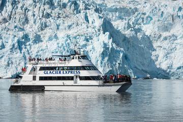 Kenai Fjords National Park Glacier and Wildlife Cruise
