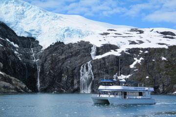 Prince William Sound Surprise Glacier Cruise