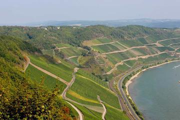 Boppard Icewine and 30 minutes Wine Tasting