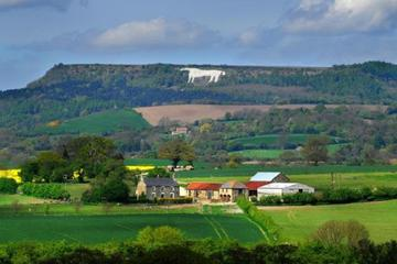 Private North York Moors and Whitby Day Trip from Leeds