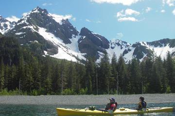 Seward Kayak Tour on Resurrection Bay