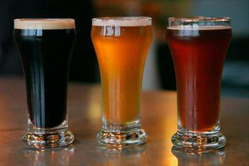 Craft Beer and Wine Bike Tour of Flagstaff
