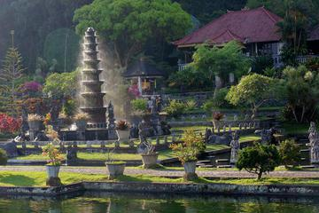 Private Full-Day Tour: Sparkling Bali