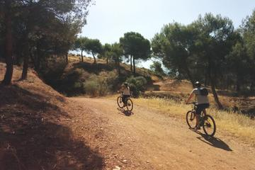 Alhambra Countryside Electric Bicycle Tour in Granada