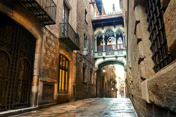 Picasso Museum and Gothic Quarter Walking Tour in Barcelona