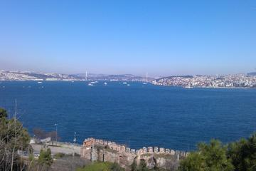 Bosphorus Cruise from Istanbul: Galata Bridge, Golden Horn, Grand Bazaar