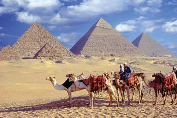 Giza pyramids Sphinx Sakkara and Memphis Day Tour from Cairo