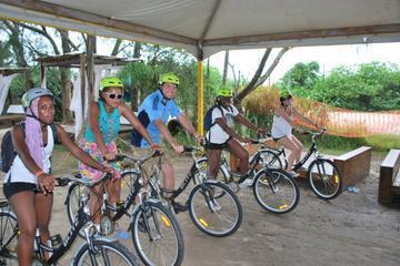 Southern Beaches of Florianópolis Bike Tour
