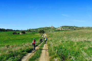 Mountain Bike Tour on the Banks of the Simeto river