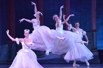 Evening Shore Excursion: St Petersburg Private Theater Tour and Russian Classical Ballet Evening Performance