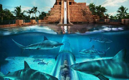 Atlantis Aquaventure and Lost Chambers with Transfers