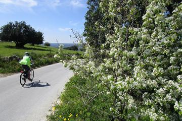 7-Day Sicily Bike Tour of the Baroque Hill Towns Standard accomodation-BB or 2 star hotels