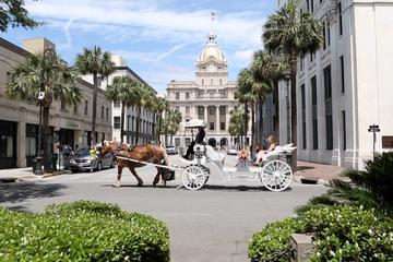 Private Horse Drawn Carriage Tour