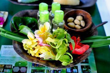 Traditional Bali Medicine Half-Day Tour Including Jamu Class