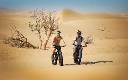 Dubai Fat Bike Half-Day Ride with Transfer