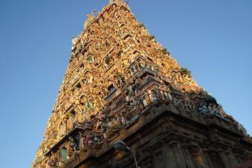 Private Chennai Tour: San Thome Church, Kapaleeshwar Temple, Marina Beach and Ripon Building