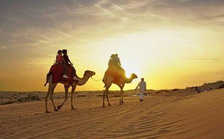 Dubai Desert Safari, Dolphinarium, and City Tour