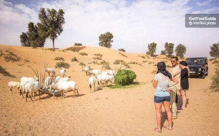 Dubai Desert Conservation Reserve 5-Hour Tour