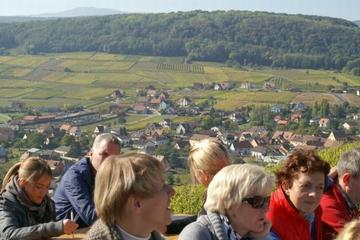 Alsace Villages and Wine Day Trip from Colmar