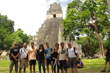 Day Trip to Tikal with Optional Canopy Zipline from Guatemala City or Antigua