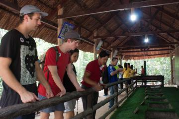 Cu Chi Tunnels Experience: Small Group Tour