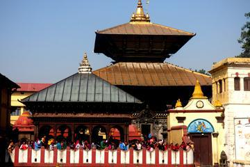 Private Half-Day Tour of Pashupatinath Temple and Boudhnath Stupa