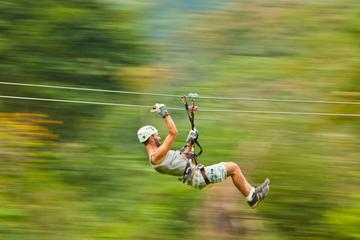 Waterfall Rappelling and Zipline Adventure at Bocawina Rainforest