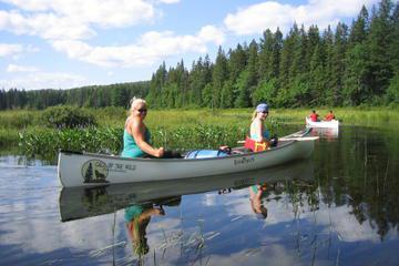 3-Day Algonquin Park Canoe Trip