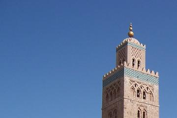 Private Half-Day Palaces and Monuments Tour in Marrakech
