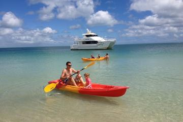 Fraser Island West Coast BBQ Lunch Cruise from Hervey Bay Including Kayaking and Swimming