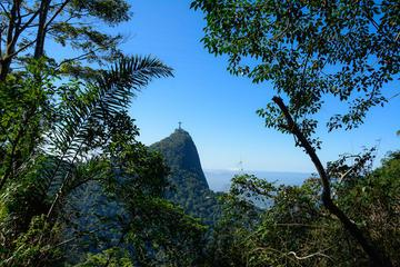 Private Tour: Santa Teresa and Tijuca Forest Photo Tour