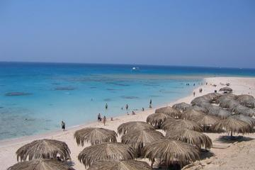 Discover Red Sea: Mahmeya Daytrip on The Beautiful Gifton Island