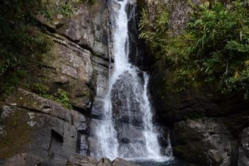 El Yunque Rainforest Nature Walk and Bioluminescent Bay Kayaking Combo Tour