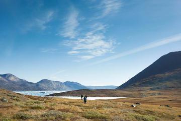 Icefjord Hike and Settlement of Kapisillit