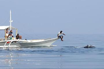 Full-Day Pamilacan Whale and Dolphin Spotting Tour